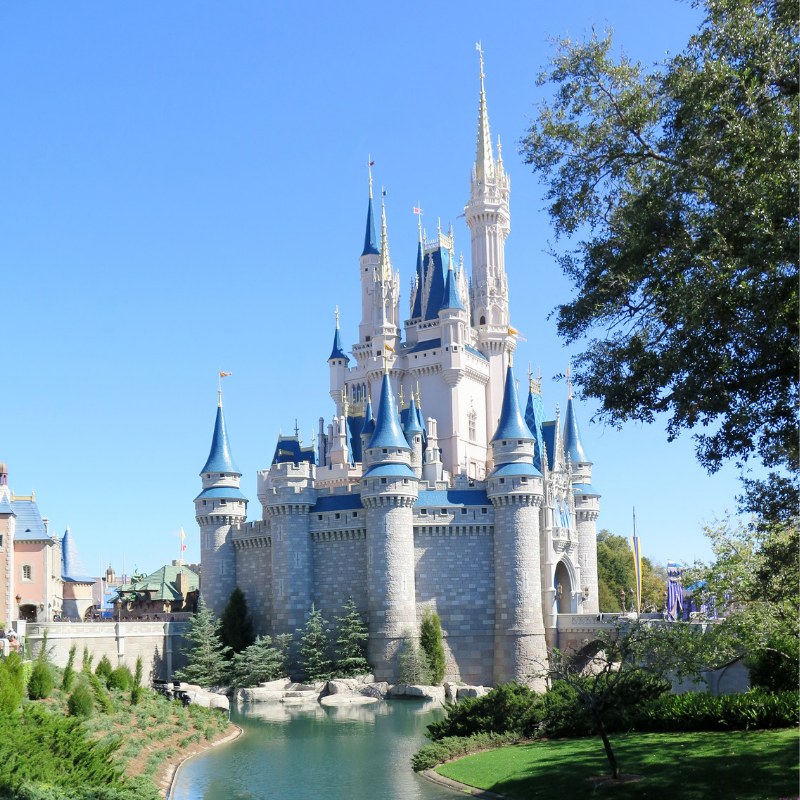Disney Vacations - Looking for a truly magical vacation? Disney World and Disneyland offer multiple theme parks, water parks, themed resorts, dining, shopping, and entertainment.Learn more>