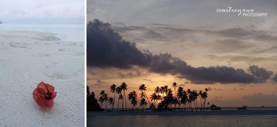 honeymoon_maldives_flower_sunset