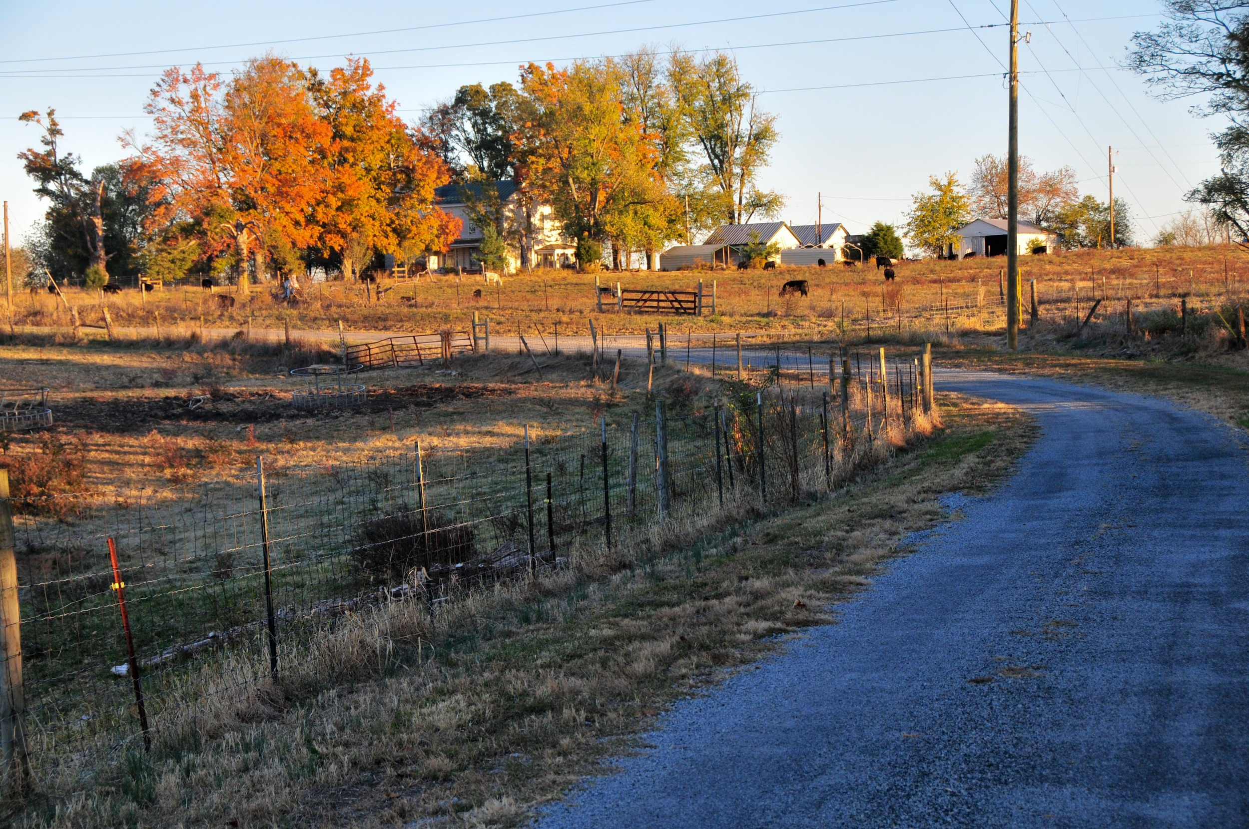 farm_15165639517_o.jpg