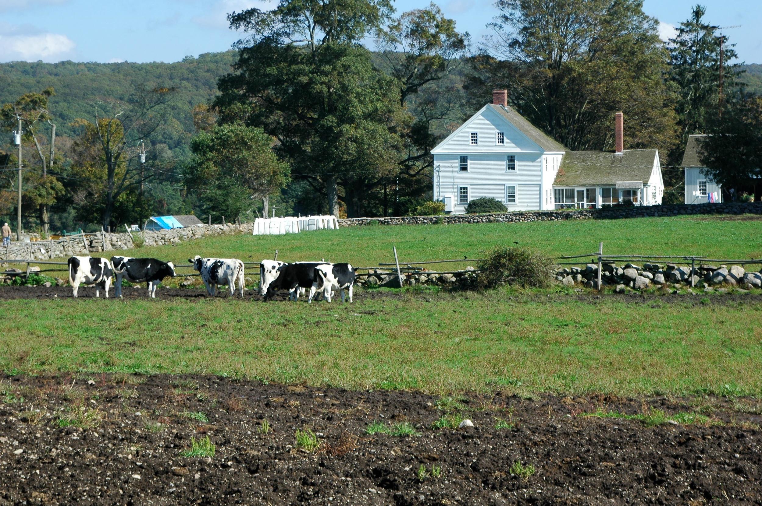 farm-2_15348963501_o.jpg