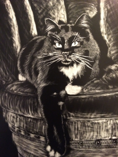 Snowfoot - Scratchboard   This dapper cat was the perfect subject for a scratchboard. For being only my second scratchboard, I'm pretty pleased with the result. The sponsor for this painting is a generous and dear friend of mine who I cherish greatly, Thank you for your support!
