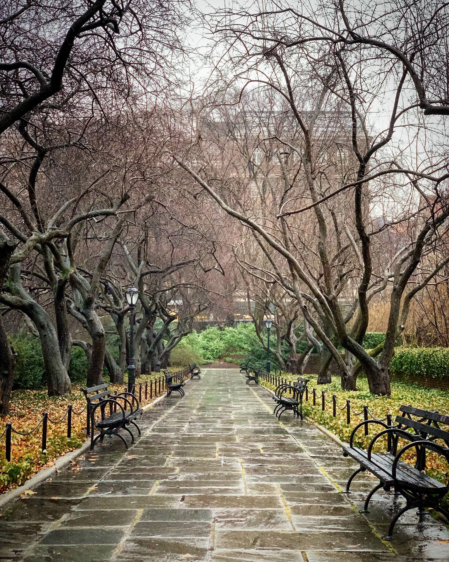 Vladimir Skirda - Central Park Cobble