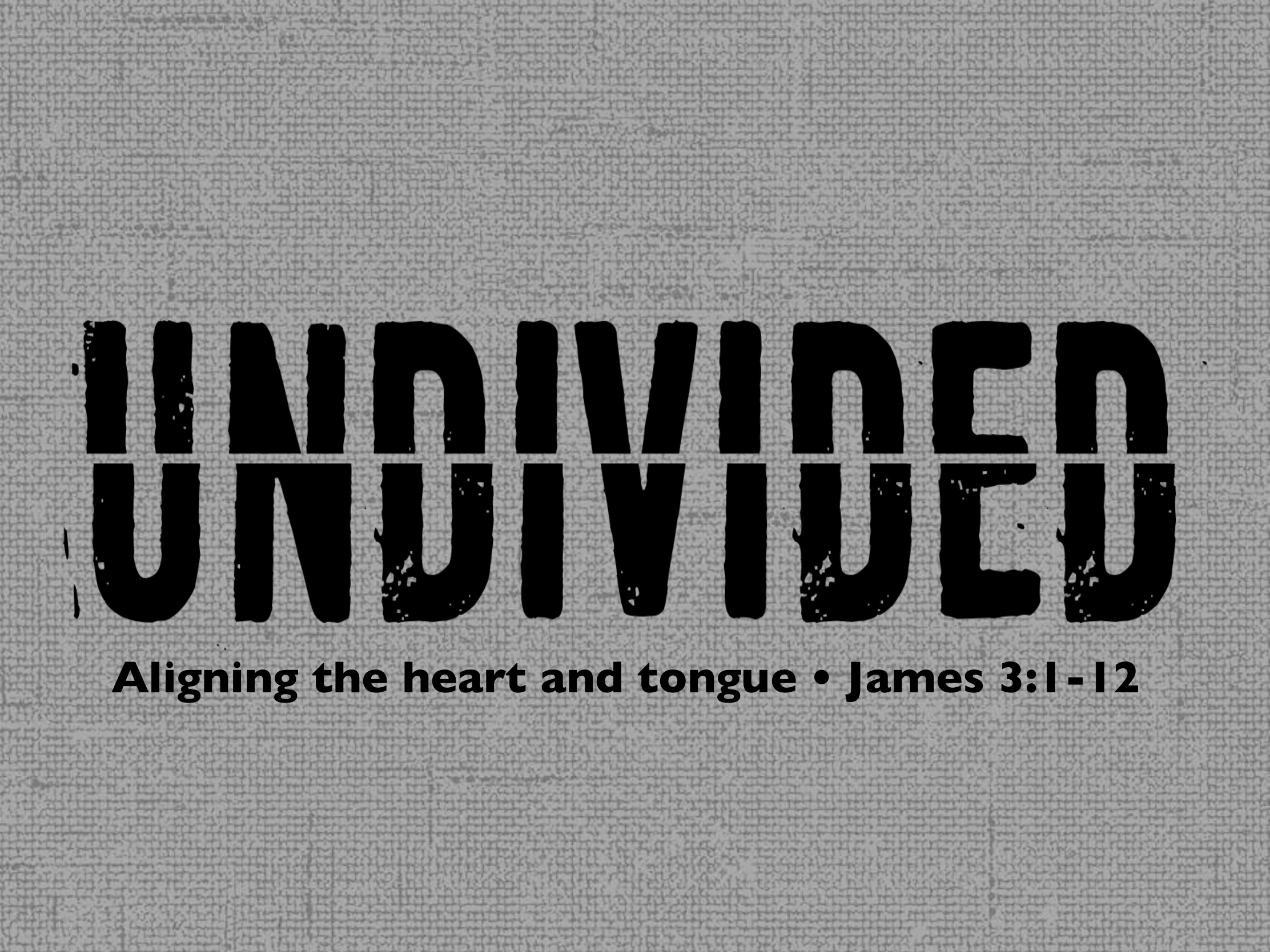 undivided Logo copy.jpg