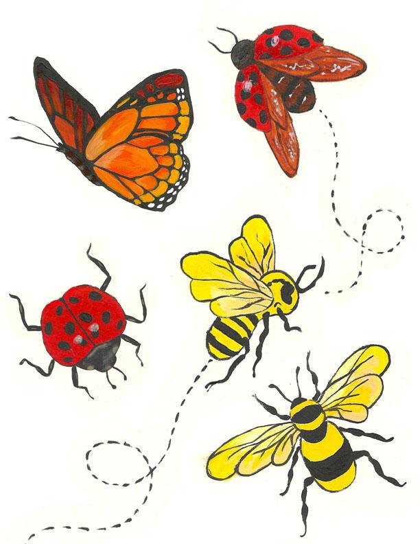 corrie.hogg.bugs1.jpg