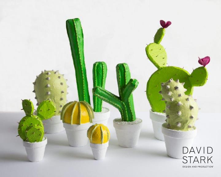 Cacti.David.Stark.Corrie.Hogg.jpg