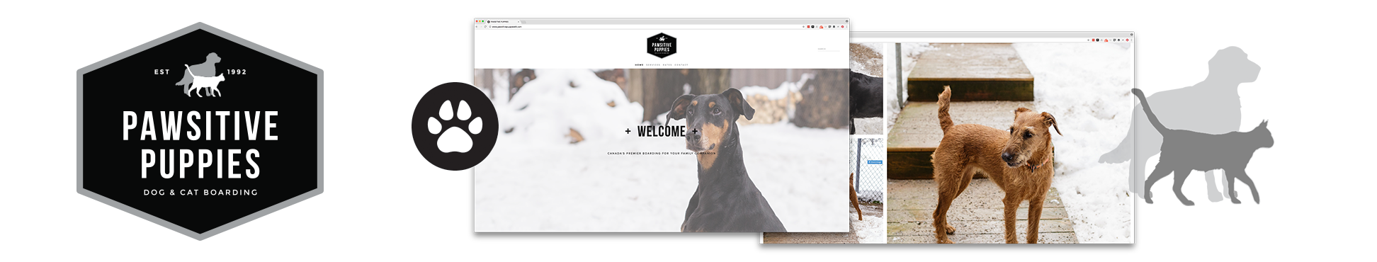 Pawsitive Puppies - Canada   Logo Brand Identity Photography Website