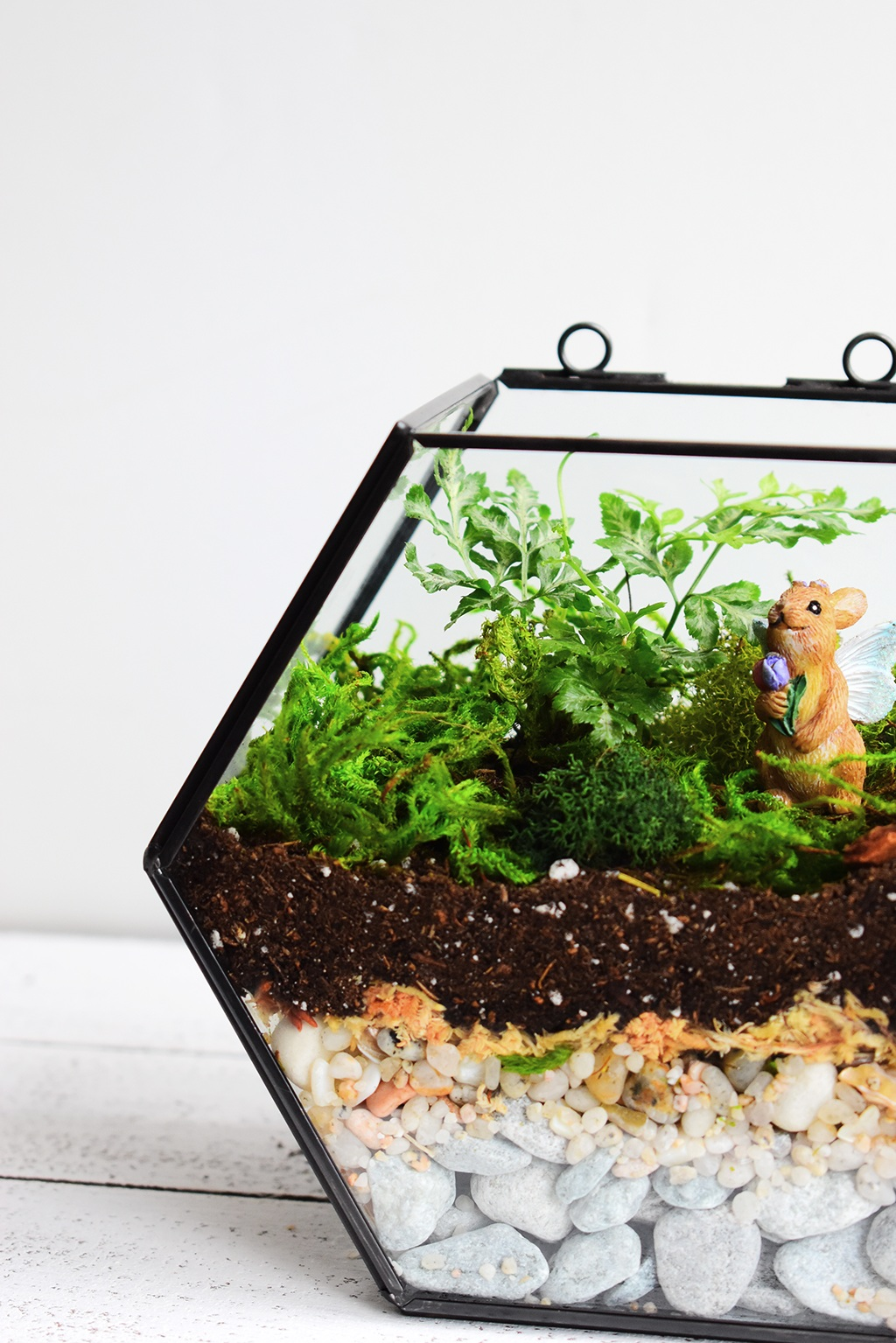 Geometric Silver Leaf Fern Terrarium via A Charming Project with Instructions