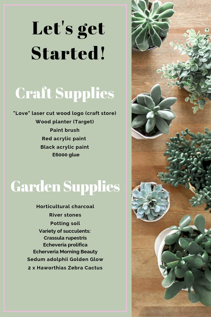 DIY Mini Succulent Garden Supply List via A Charming Project