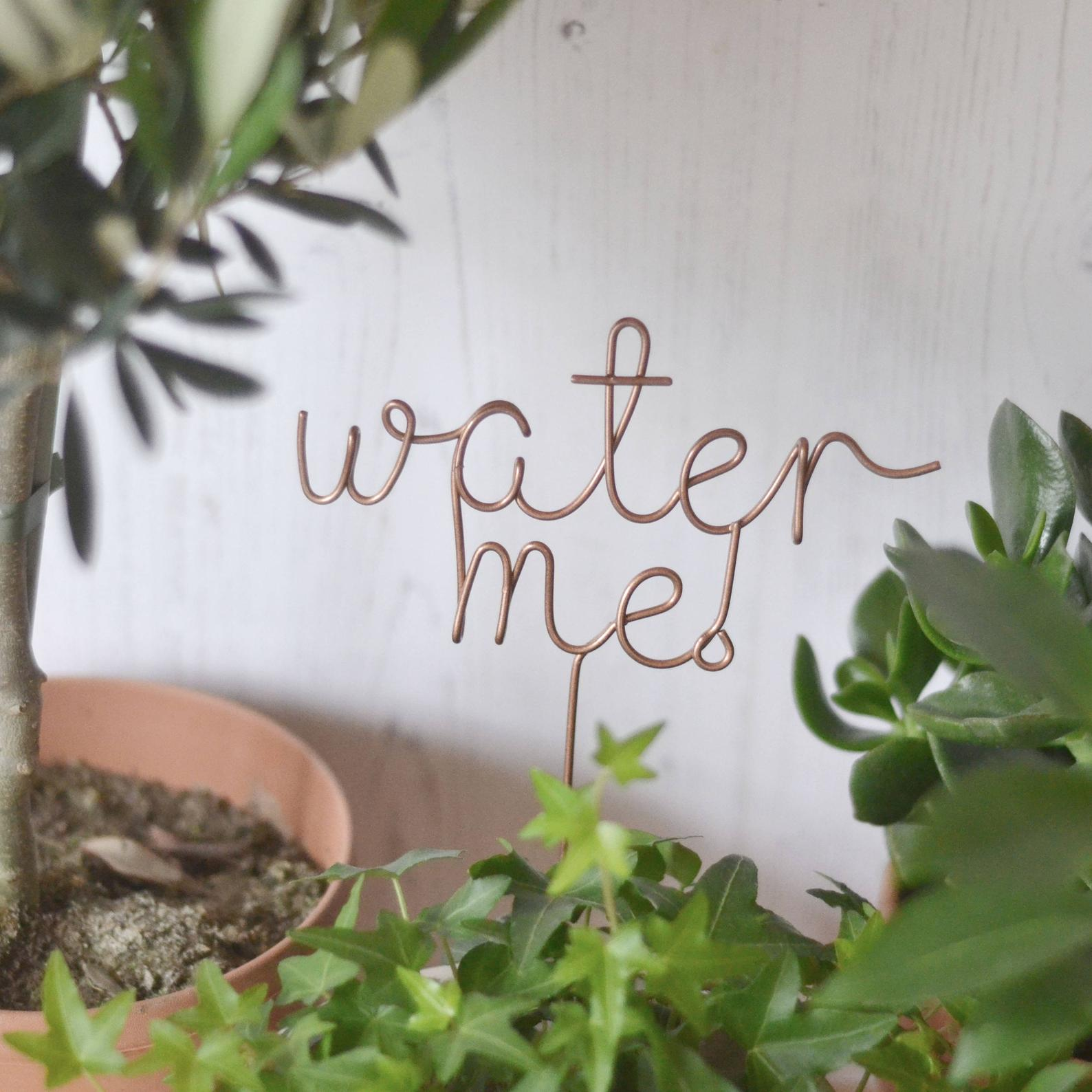 Water me Plant Marker via etsy