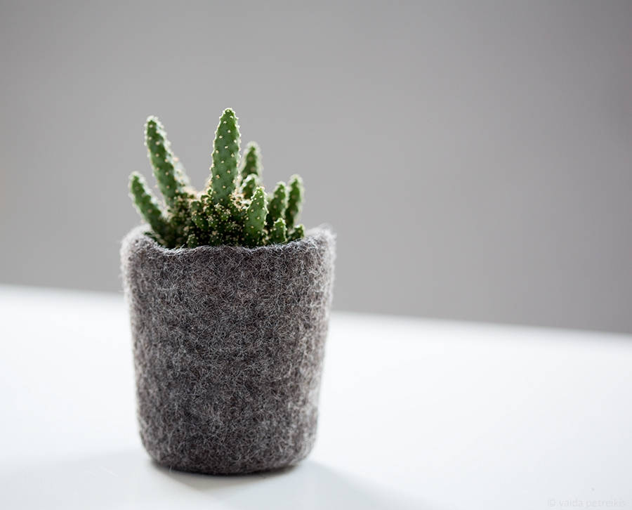 wool succulent planter via Etsy