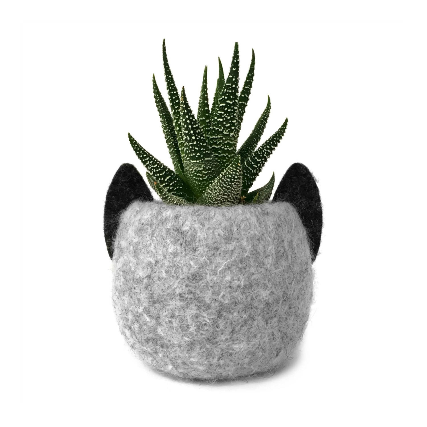 cat wool planter.jpg