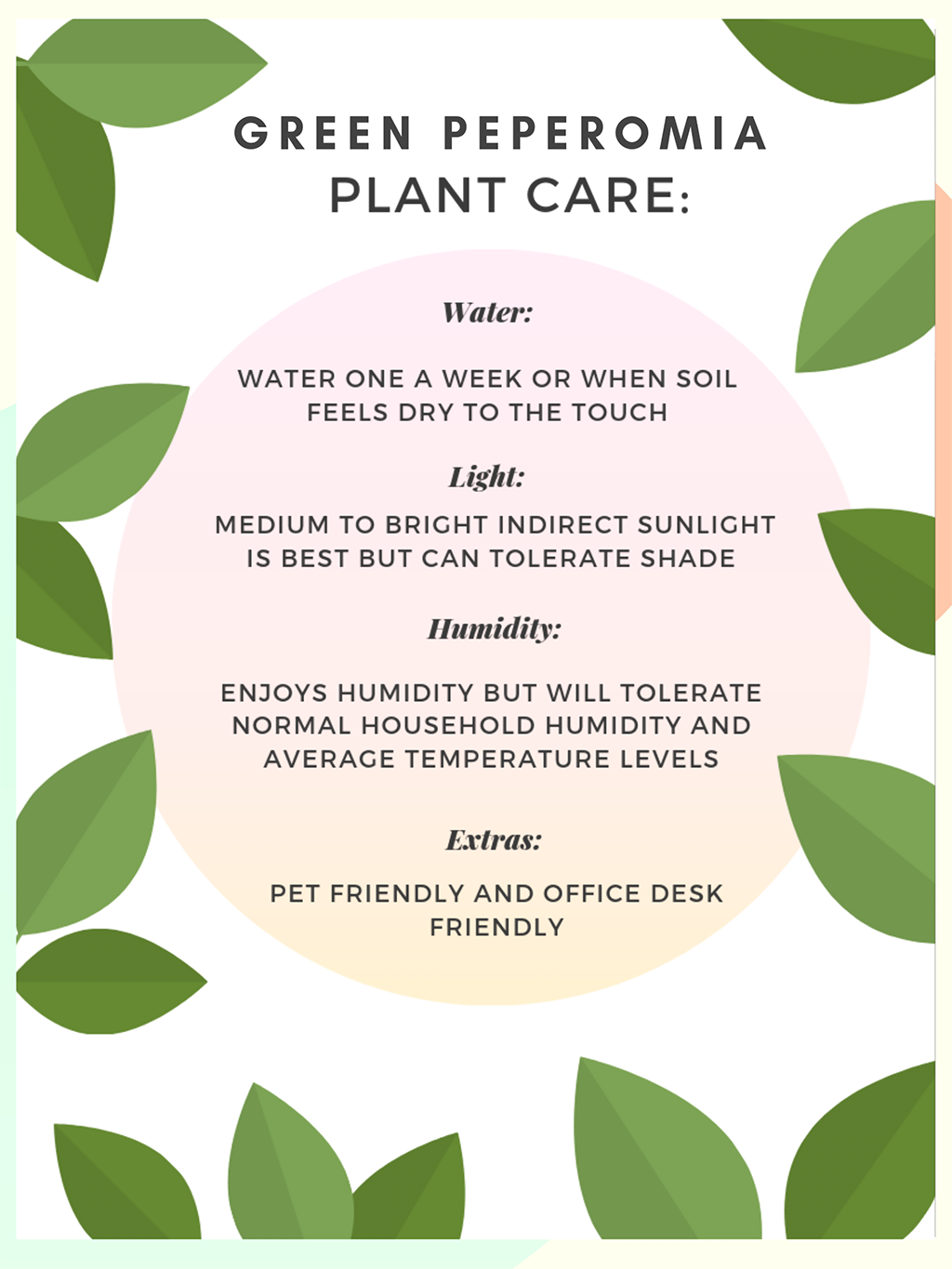 Peperomia Plant Care Sheet