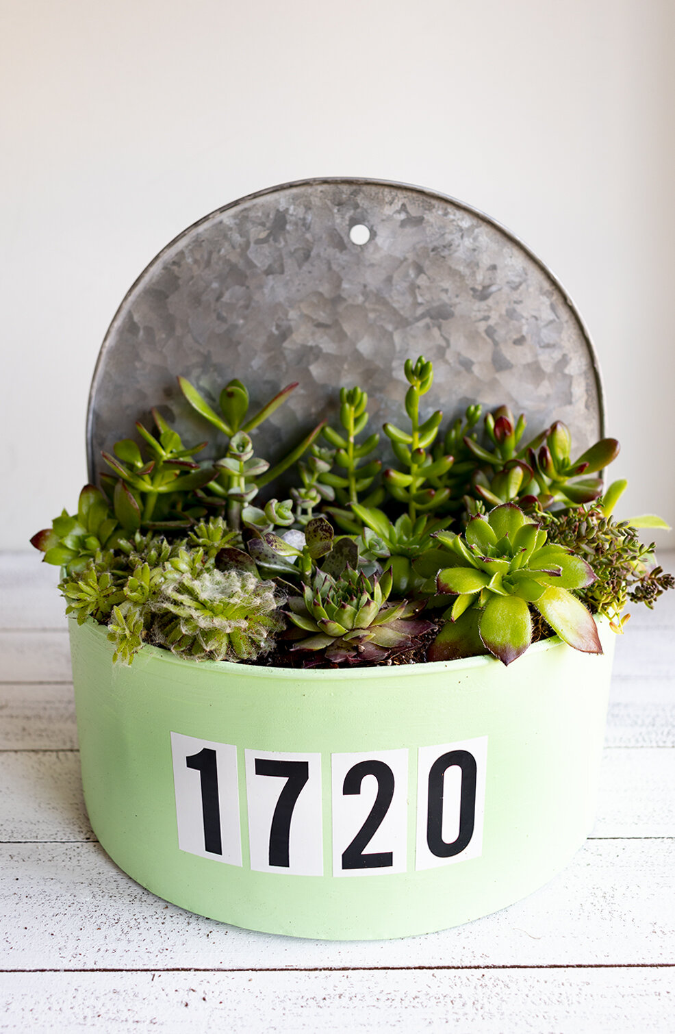 Project: House Number Planter - Hearty Succulents will never let you down.
