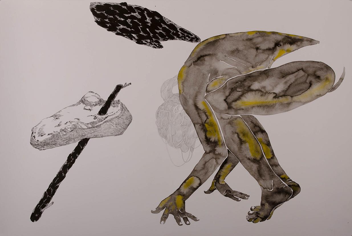 monika-pascoe-mikyskova-evolucia