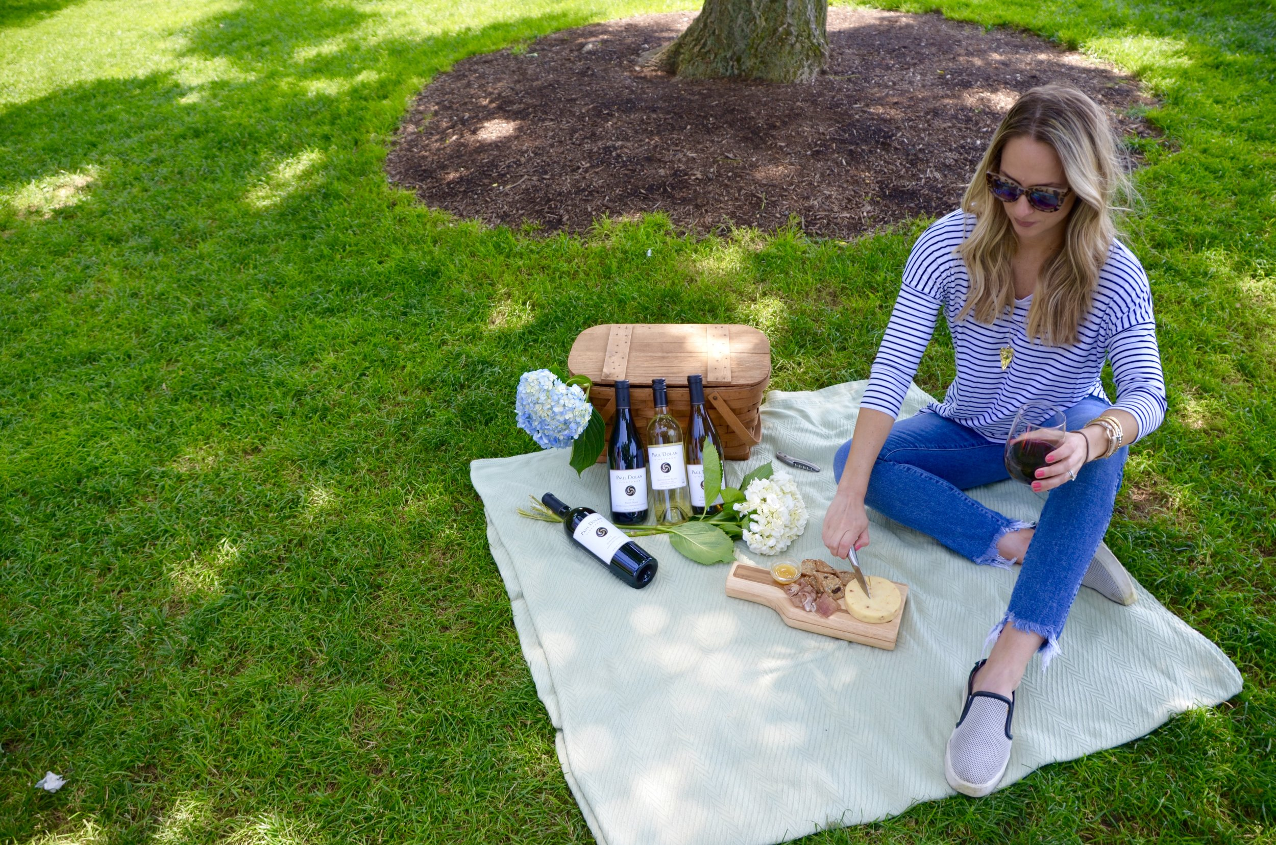 picnic and wine