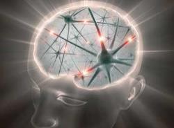 spiritual-brain.jpg