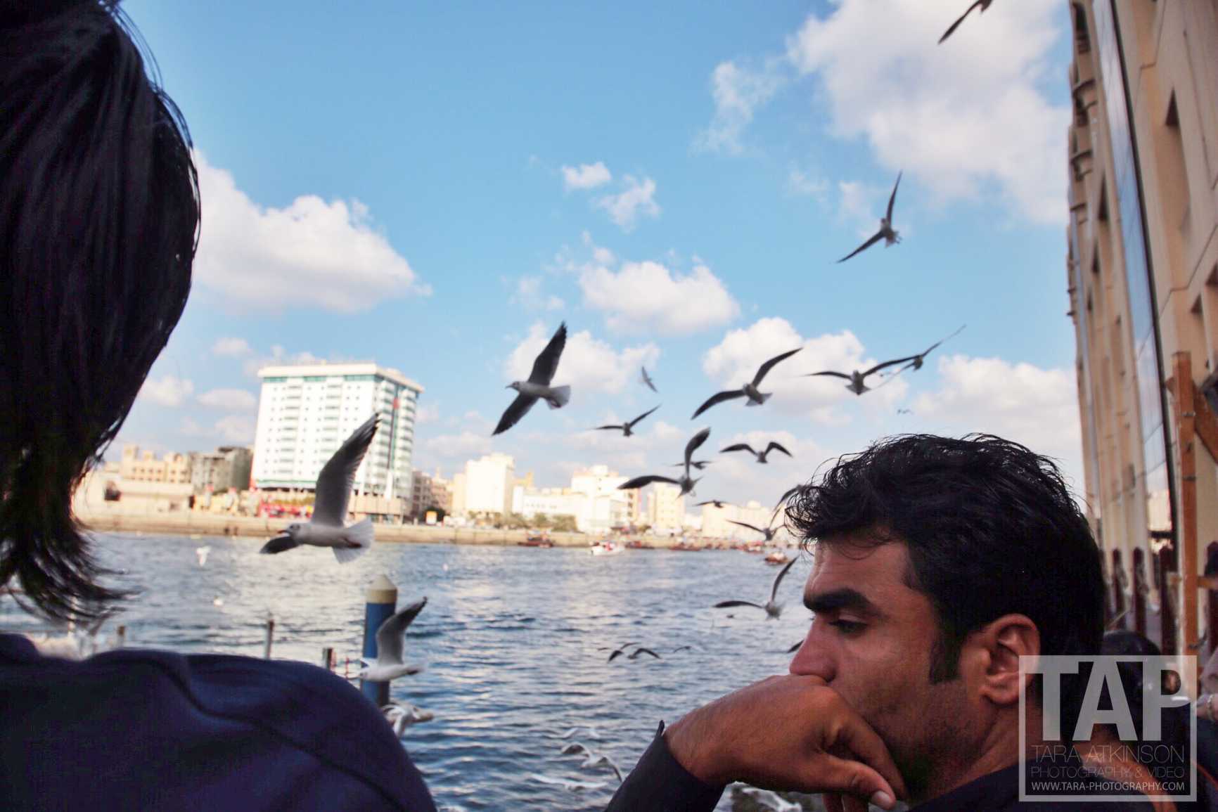 A moment for contemplation on national day as passerby's feed the seagulls
