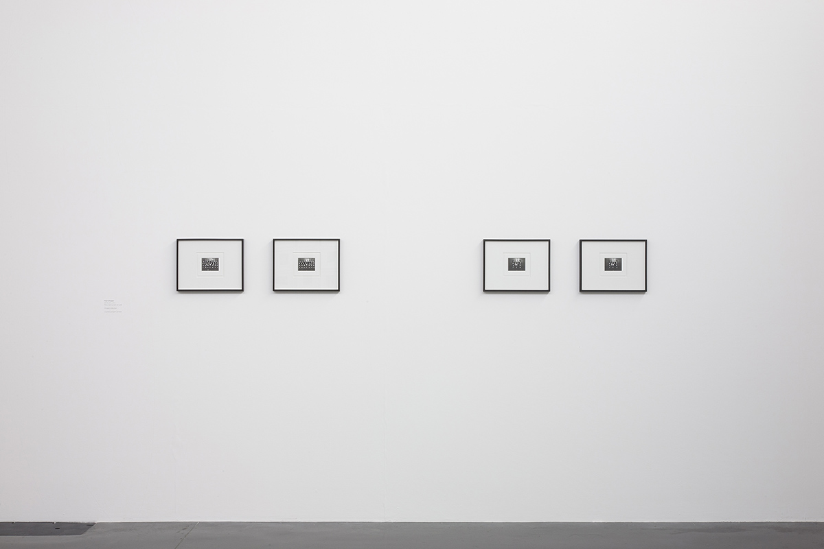 Series 2012, pencil on card, installation view