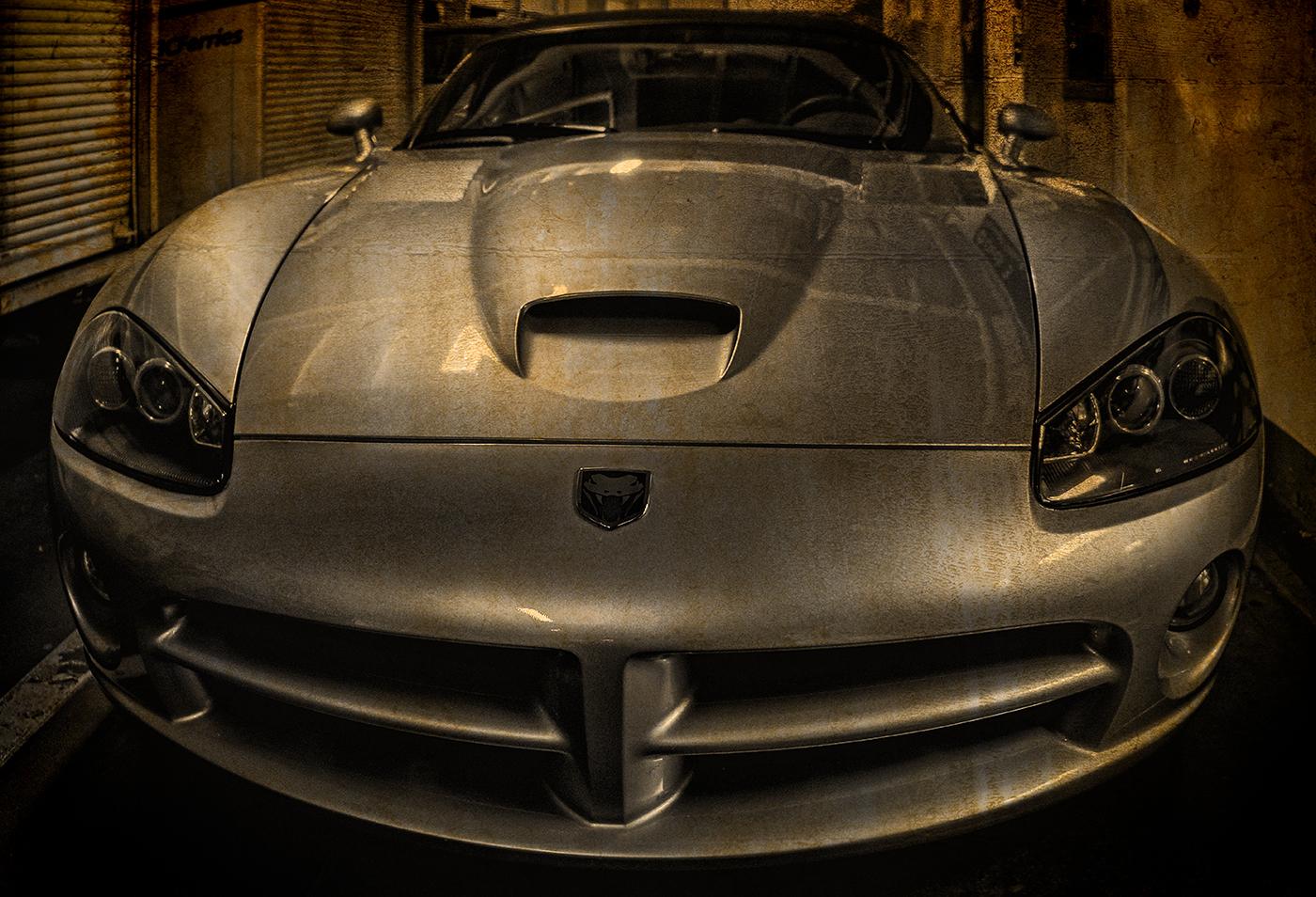 Viper-2.jpg