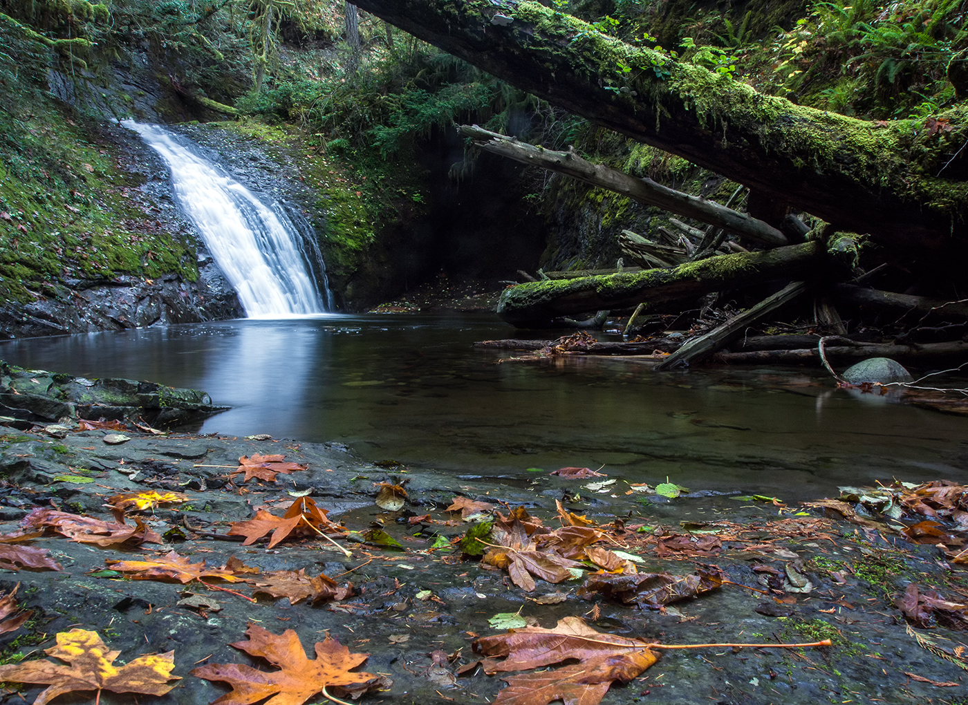 One of the lower falls in Benson Creek Park