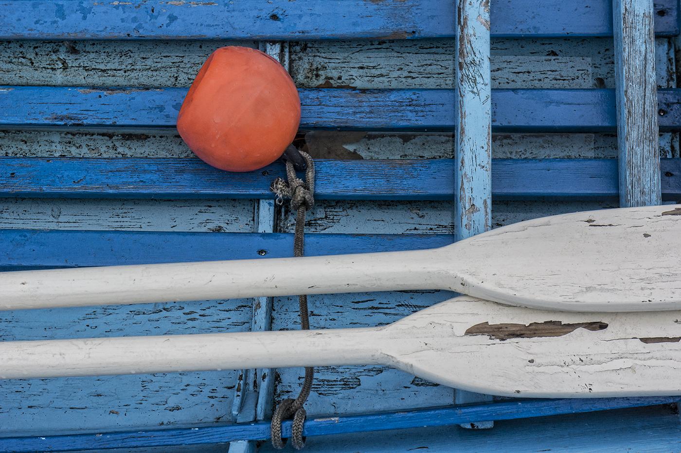 White Oars-1.jpg
