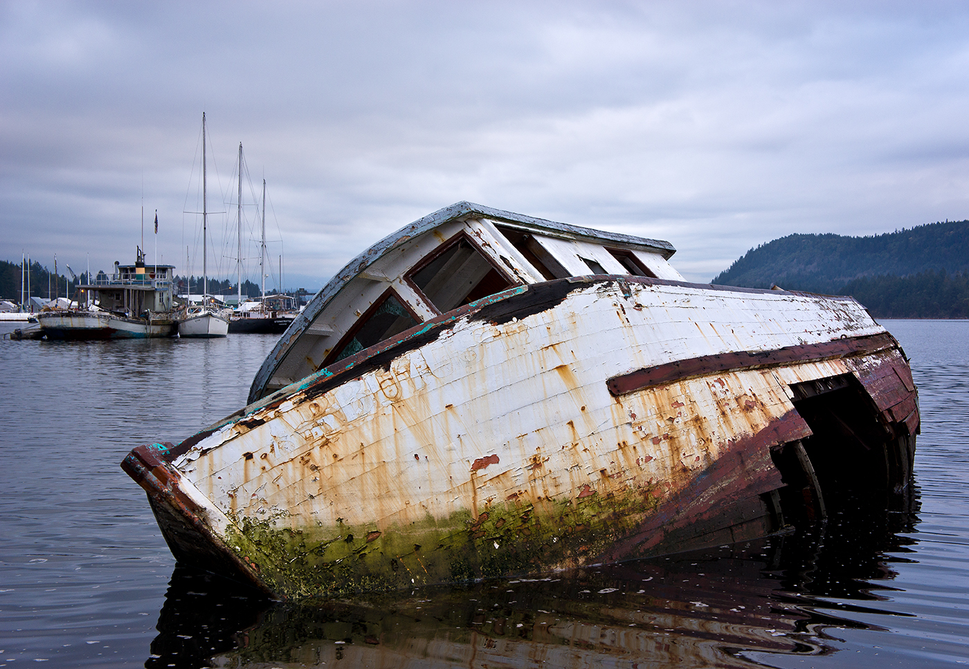 Beached and Abandoned.jpg