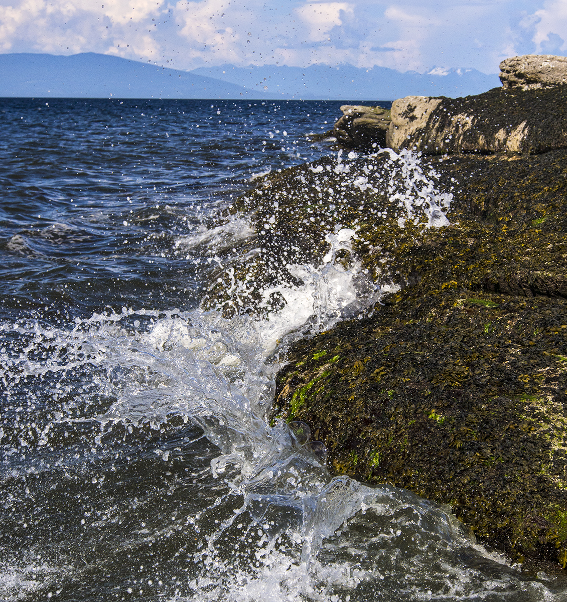 Sebastian Beach Splash