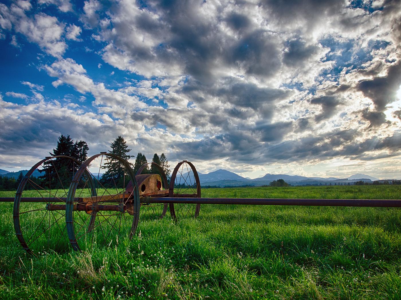 Farmers Field In Cassidy