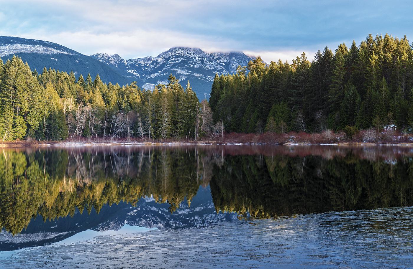 Icy Loon Lake