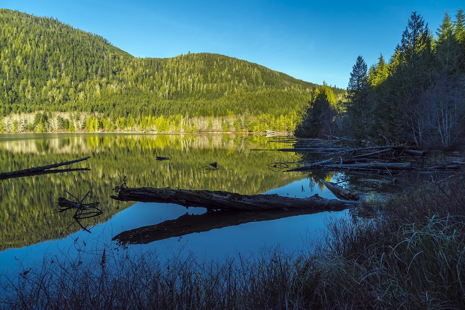 Sarita Lake Shadows