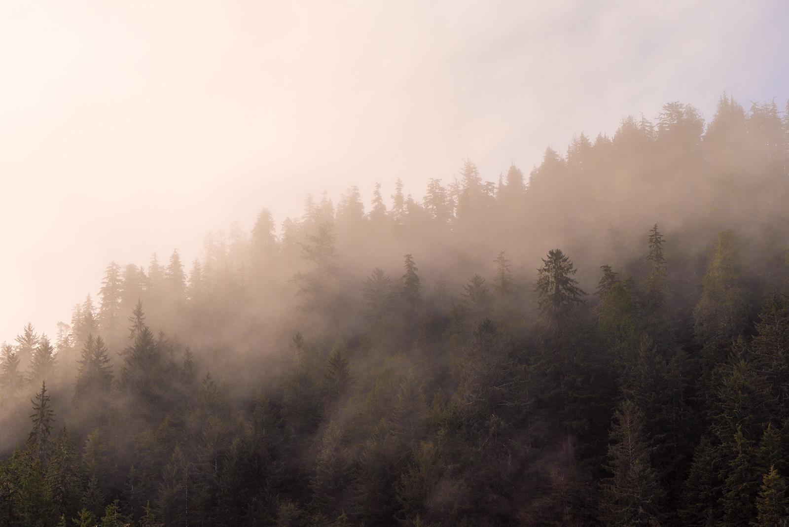 San Josef Morning Mists.jpg