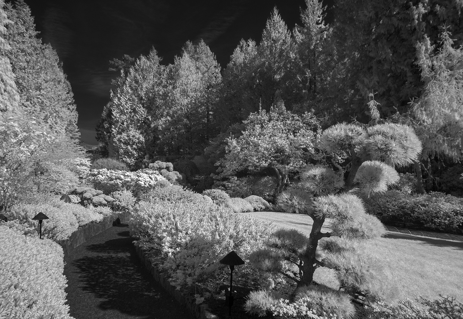Butchart Gardens Infrared Image