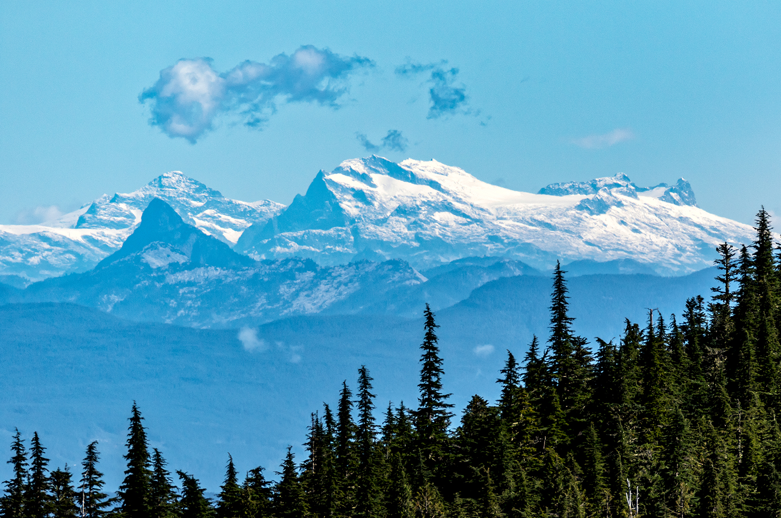 Some of the coastal mountains wayyy over on the Mainland as seen from Mount Arrowsmith