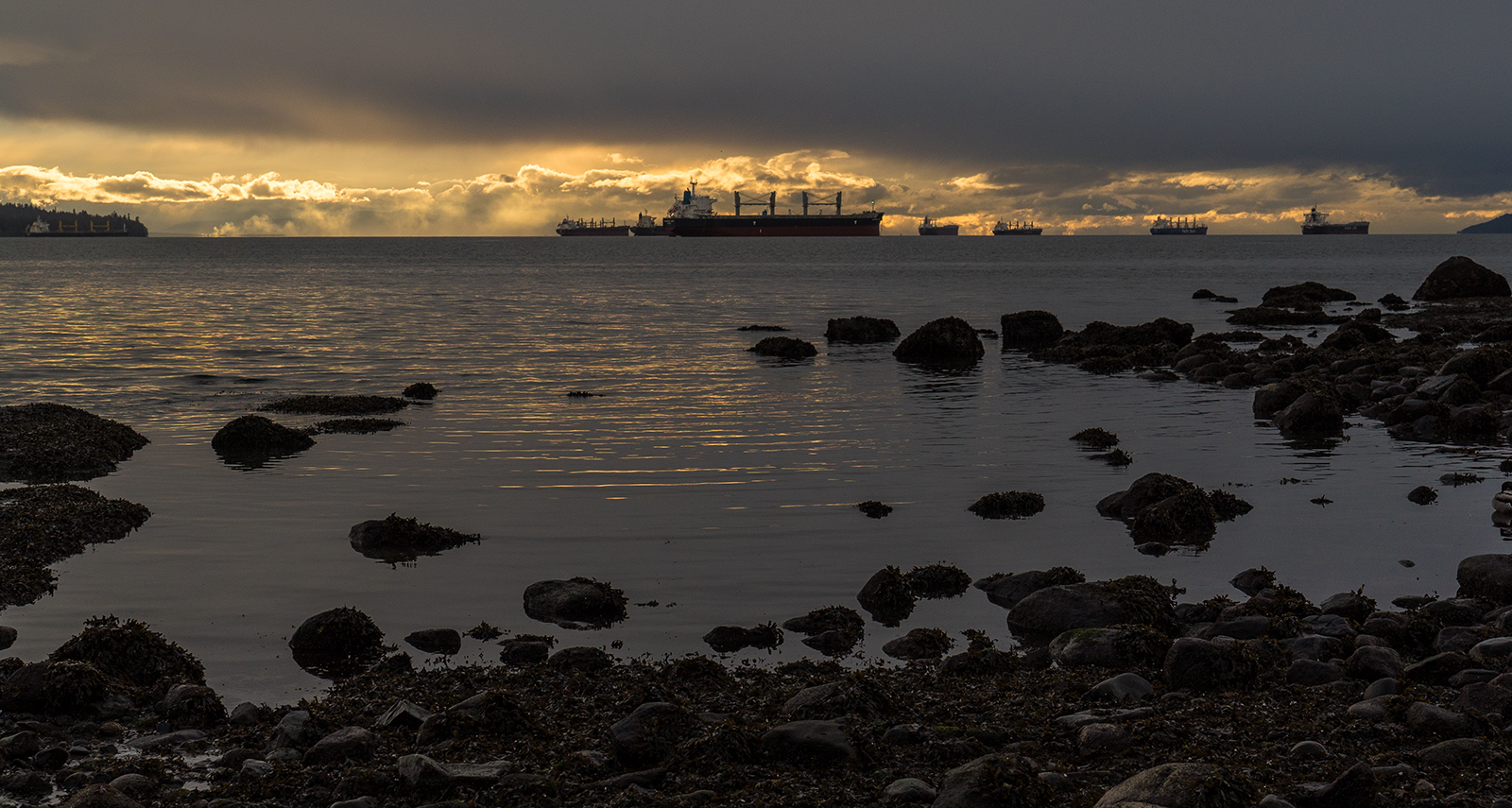 English Bay Freighters.jpg