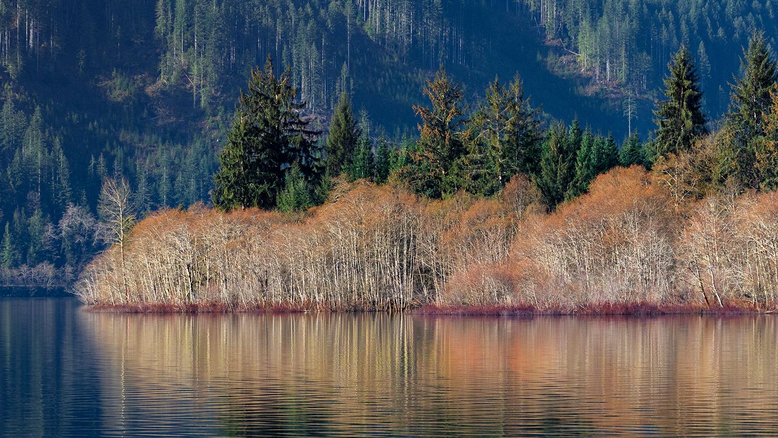 Lake Cowichan Colors.jpg