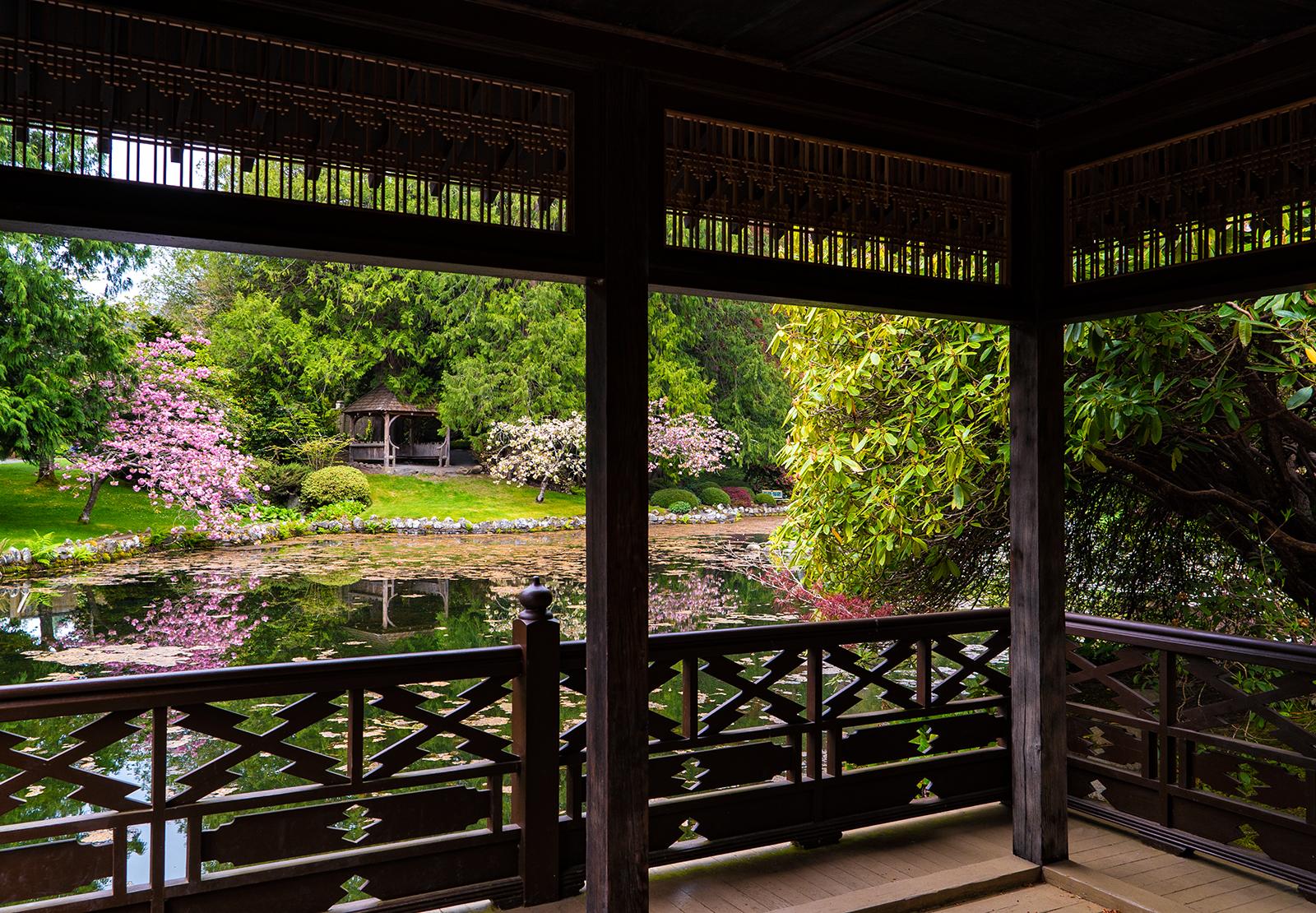 Hatley Castle Japanese Gardens 2.jpg
