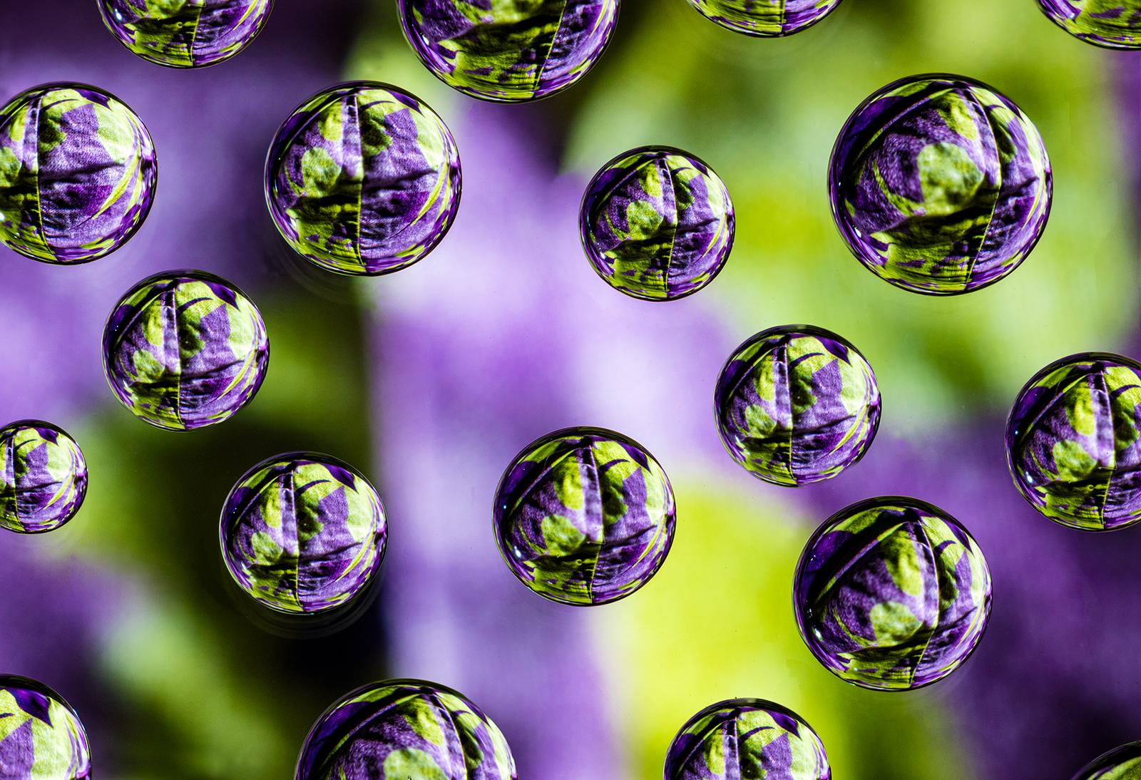 Purple and Green Worlds-Edit.jpg