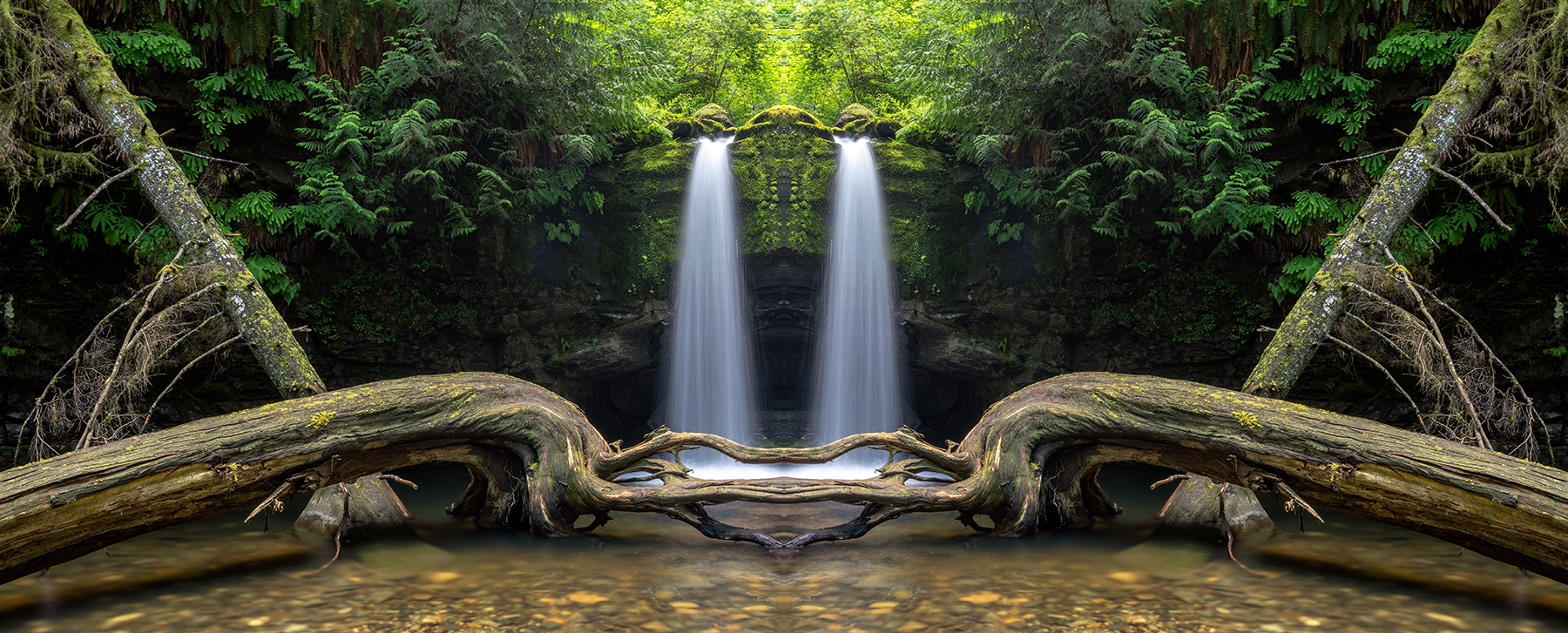Stocking Creek Falls in the Fairy Dimension!