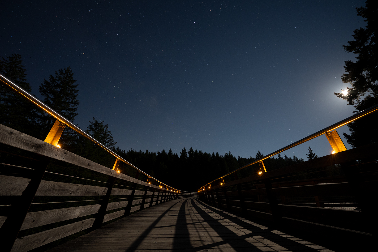 Moonlight Trestle 2.jpg