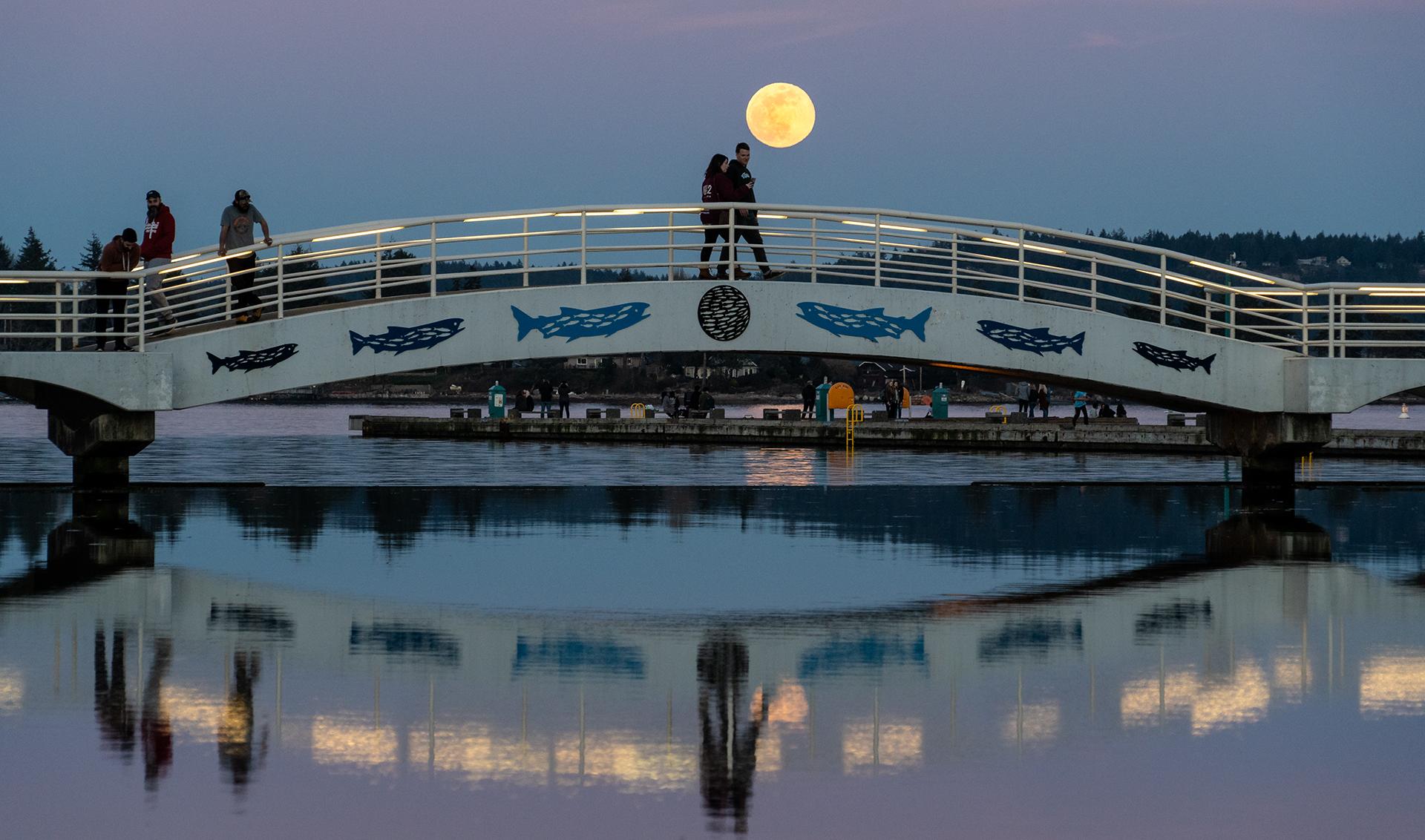 Swyalan Full Moon.jpg