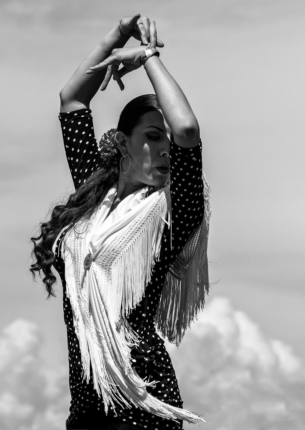 Canada Day Flamenco BW.jpg