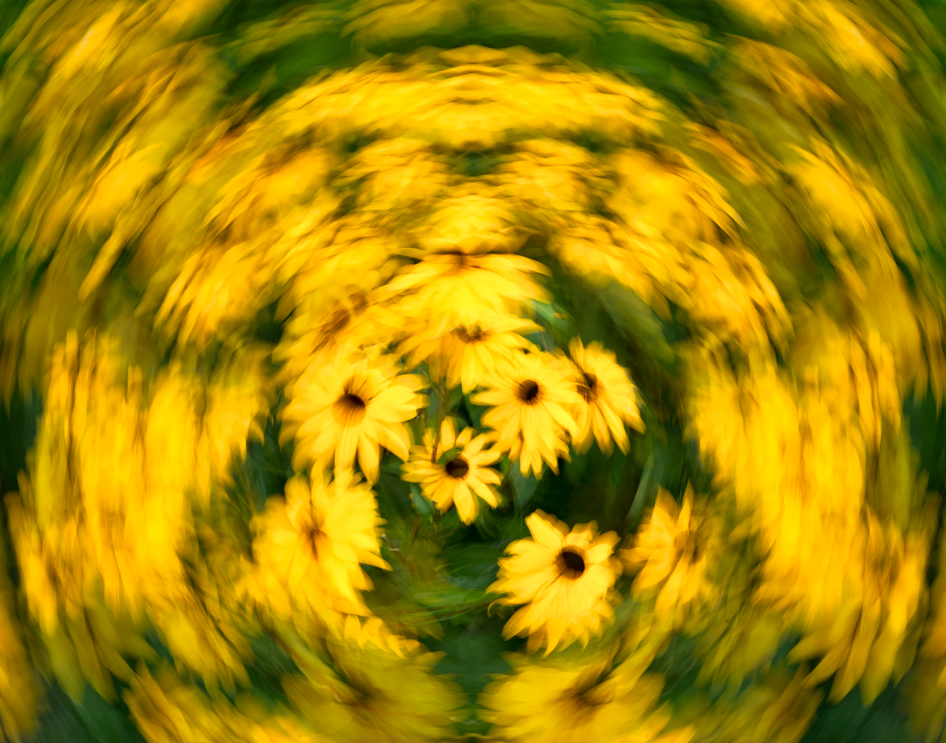 Flower Swirl Mirror.jpg