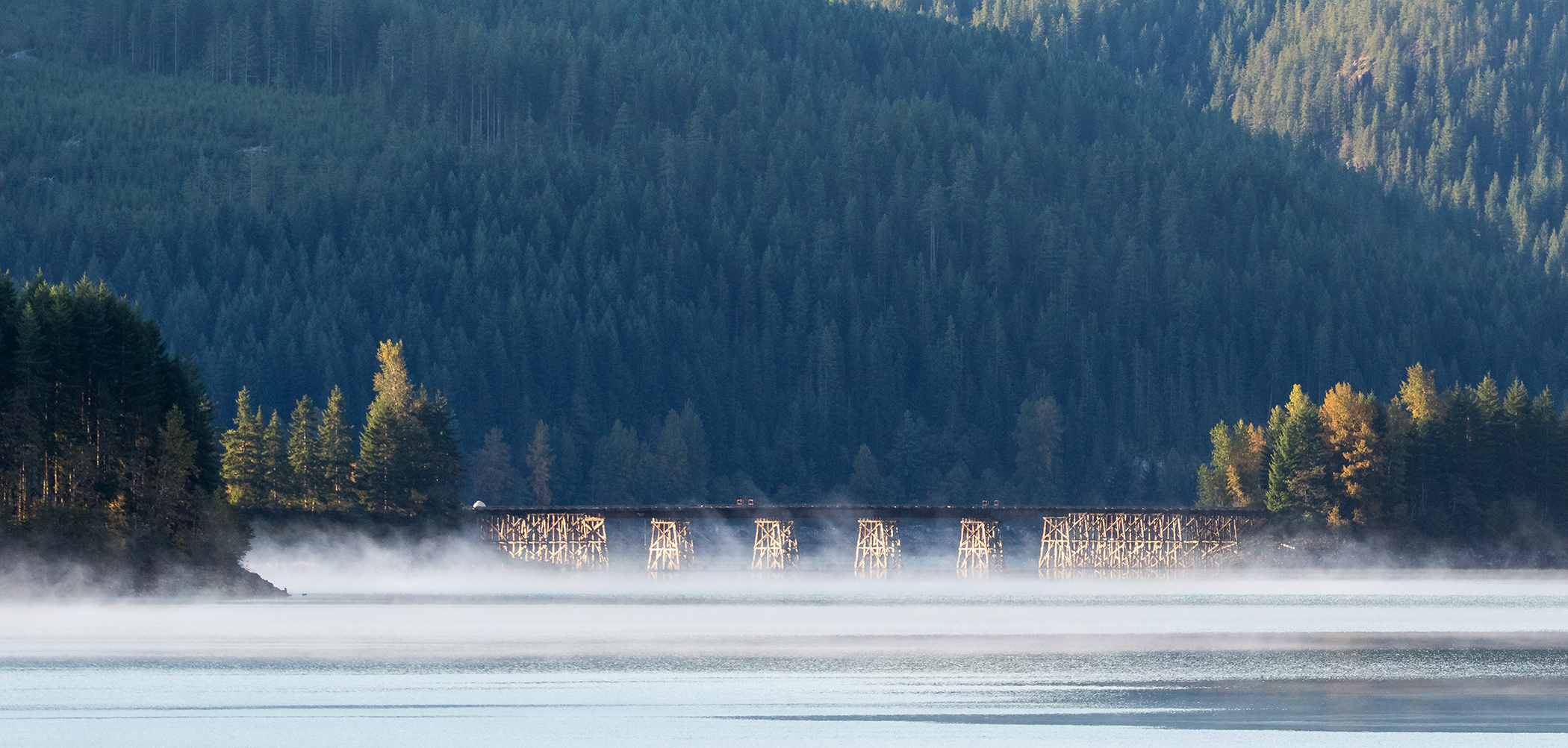 Bridge At Upper Campbell Lake