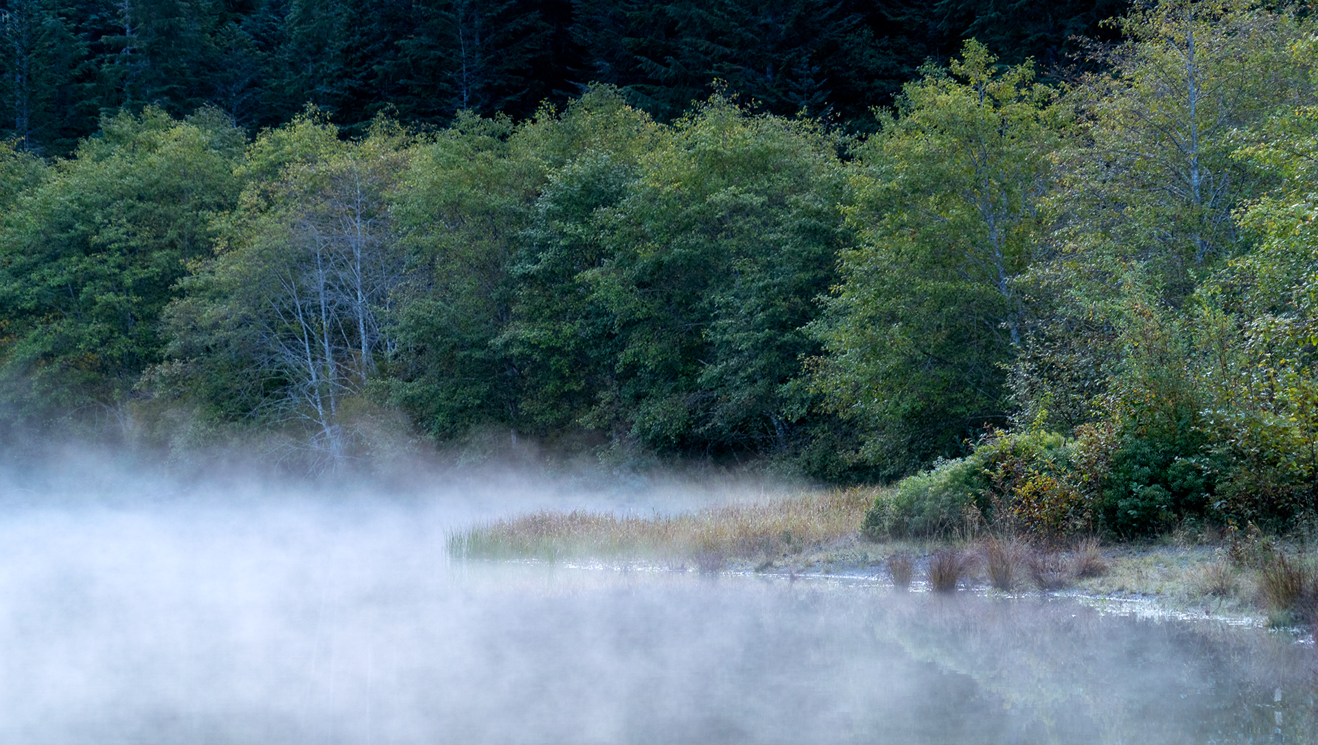 Early morning mist on Gold Lake