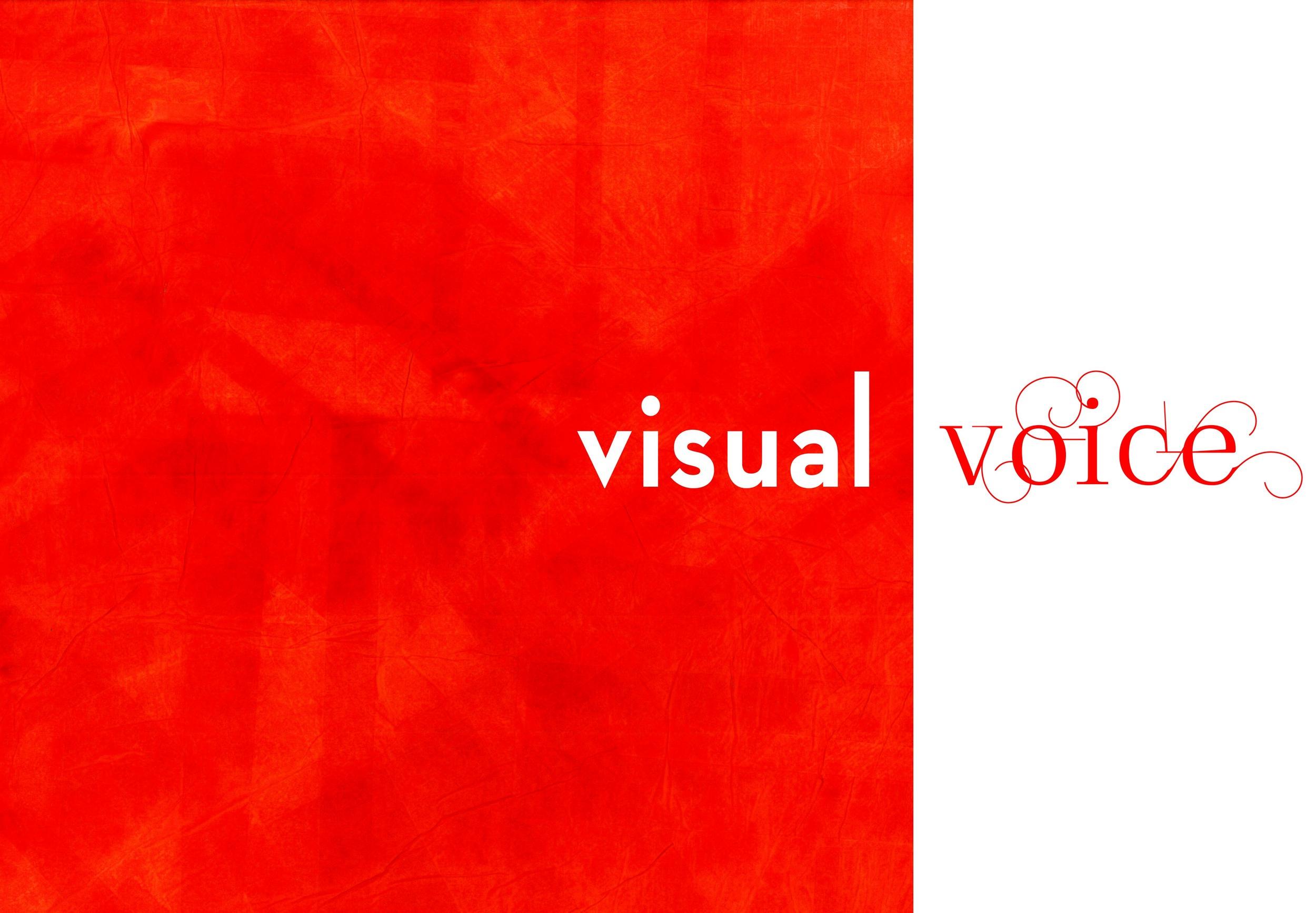 visual voice 2.jpg