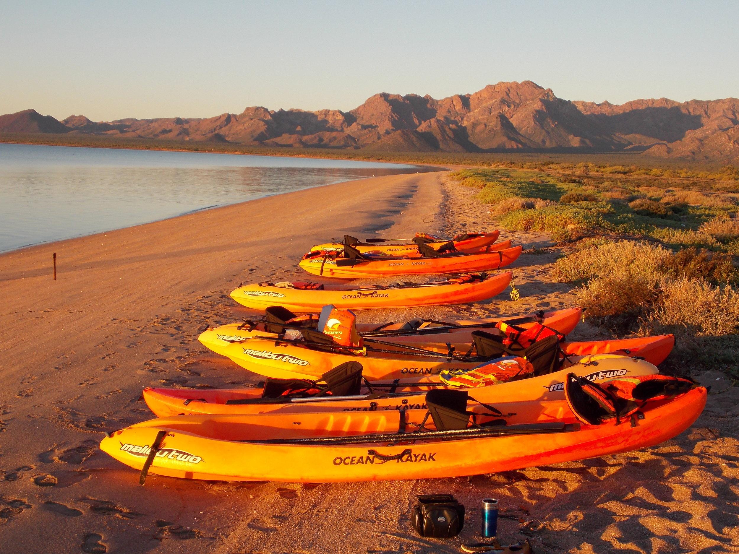 Kayaks on a Beach.JPG