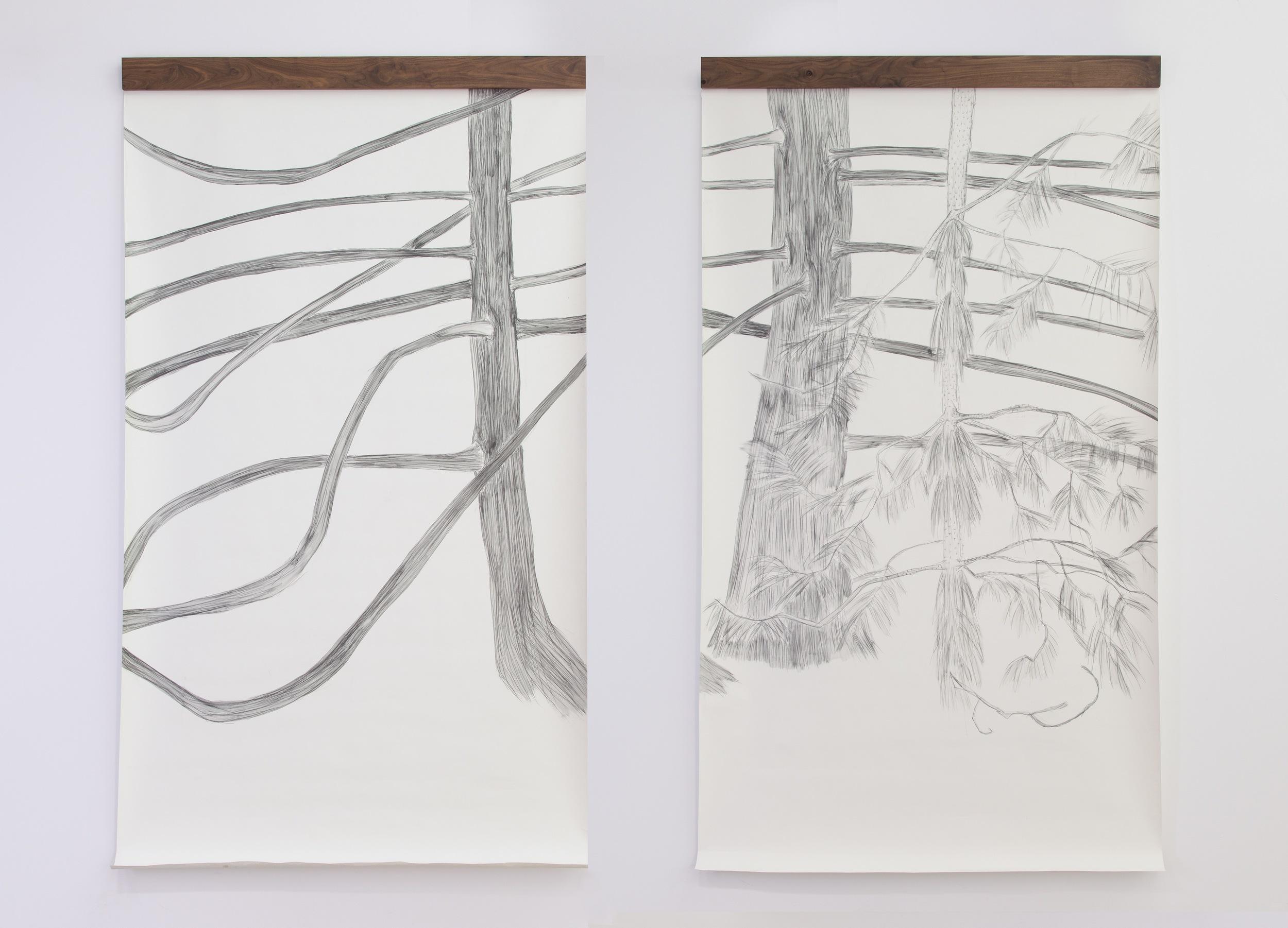 The Trees' Portrait