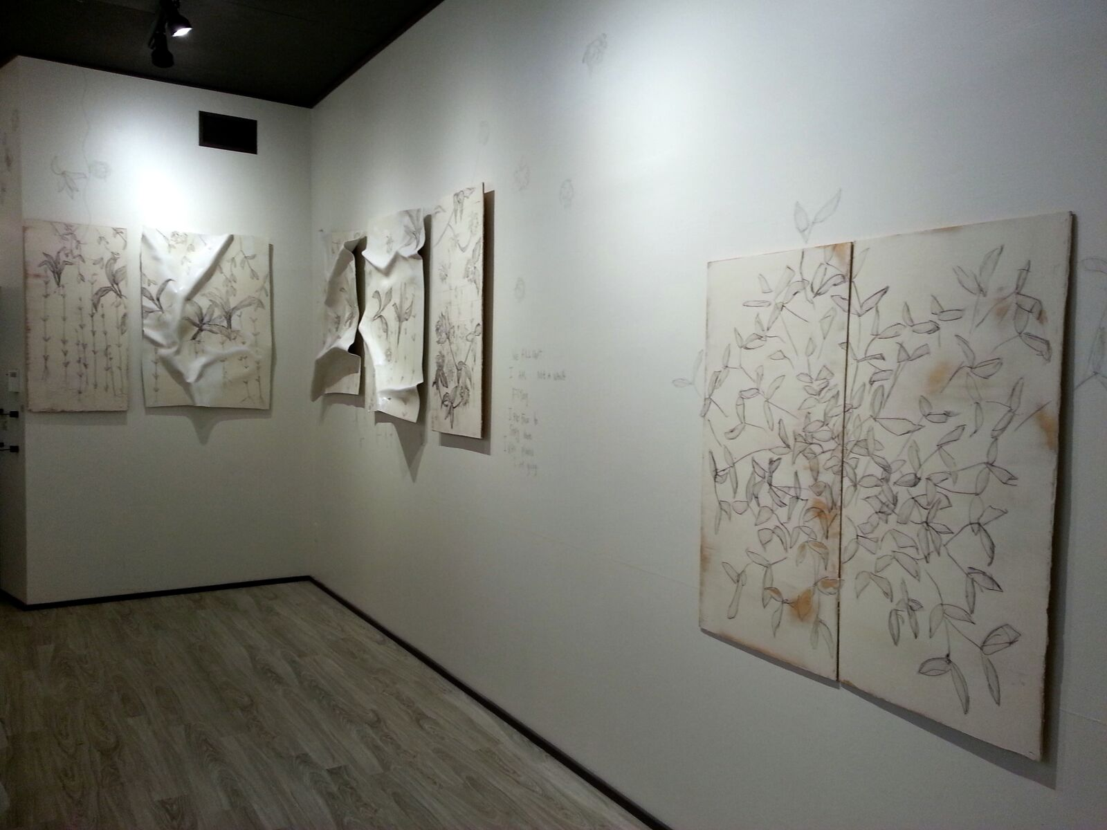 Equivocal Space, 2013