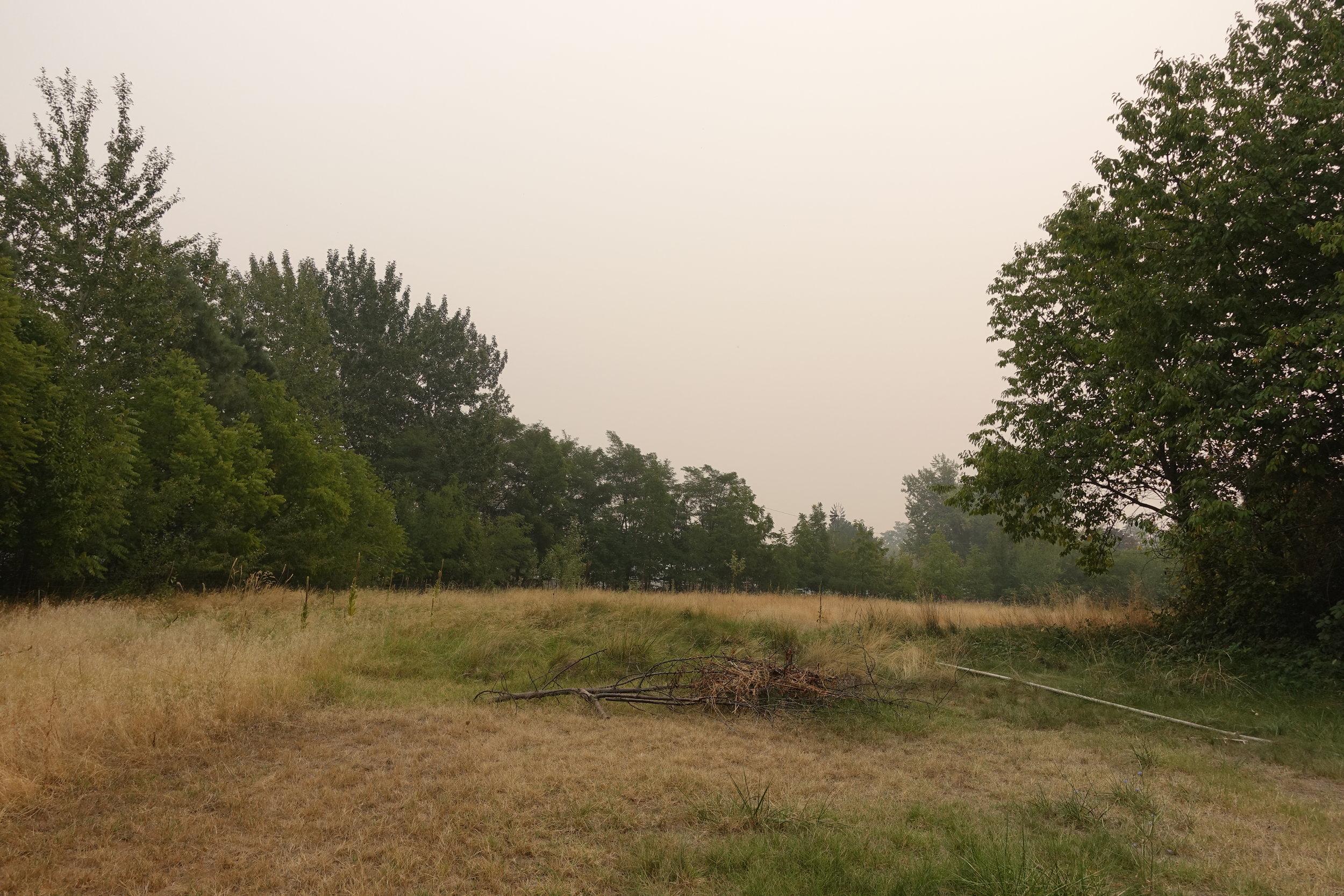 Duffy. Smoke. 9.7.17