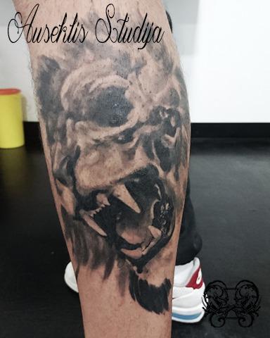 Evo Lion skull calf.jpg